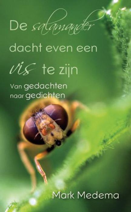 de gedachten van mark medema | www.middengroninger.nl